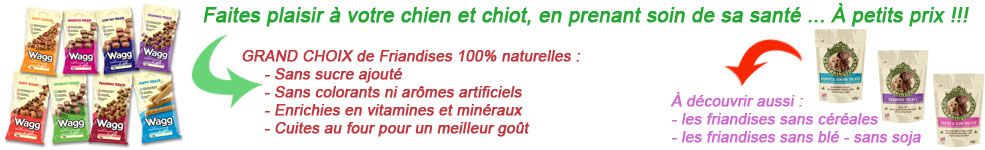 friandises pour chien naturelle wagg